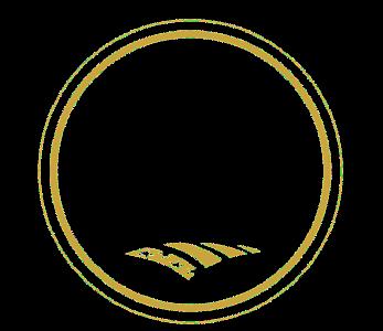 NACo 2018 Achievement Award Winner emblem